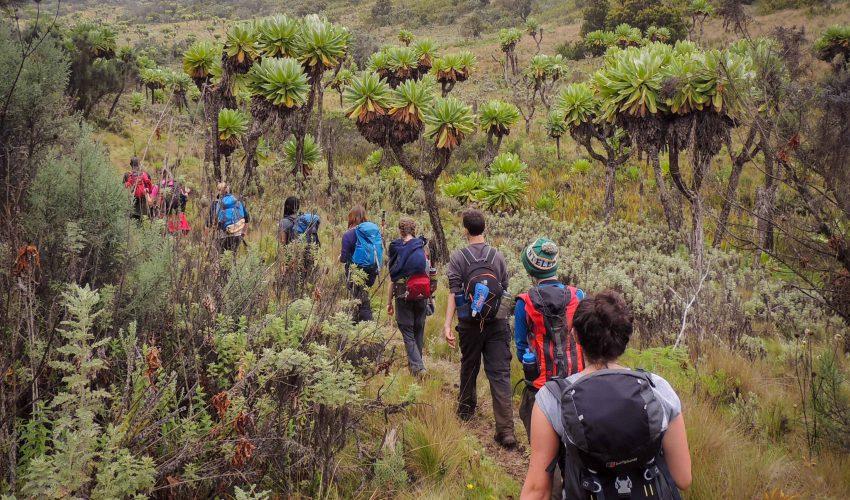 school_expedition_uganda_trek_mount_elgon