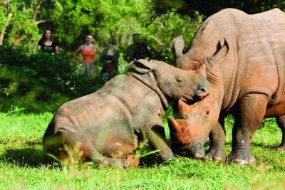 school_expedition_uganda_trek_rhino_sanctuary