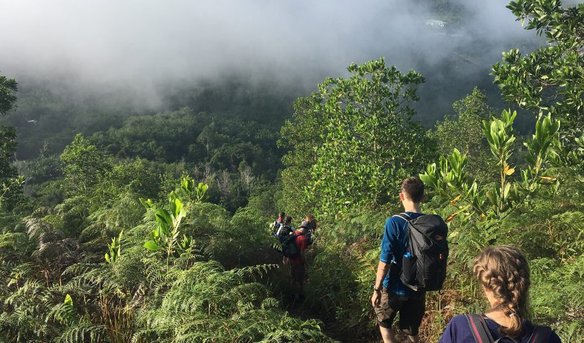school_expedition_borneo_trek_bongkud_hill_walk