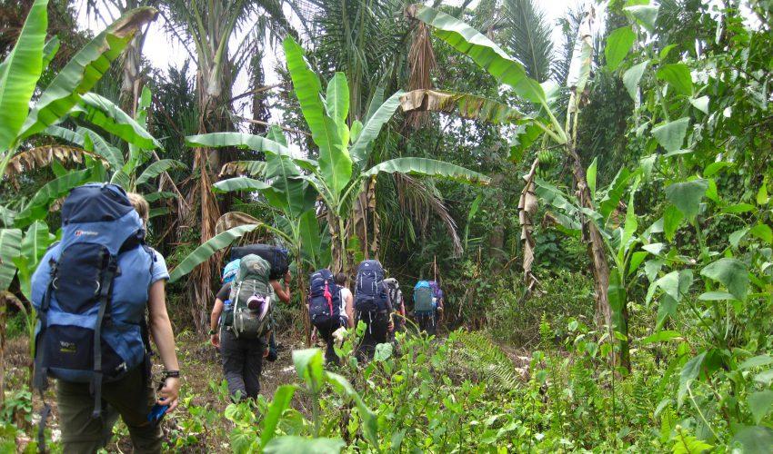 school_expedition_borneo_trek_jungle_walk