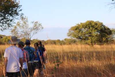 People trekking through the safari