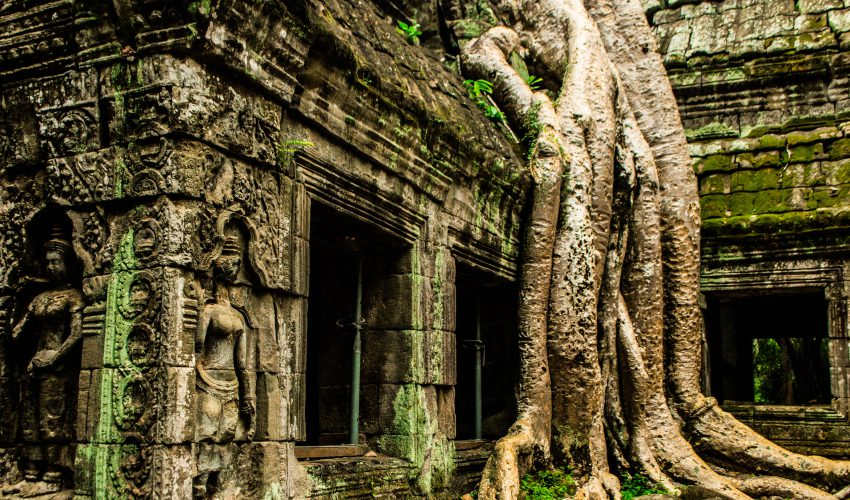 school_expedition_cambodia_scuba_ta_prohm-2
