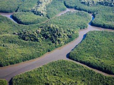 school_expedition_borneo_scuba_kinabatangan_river-3