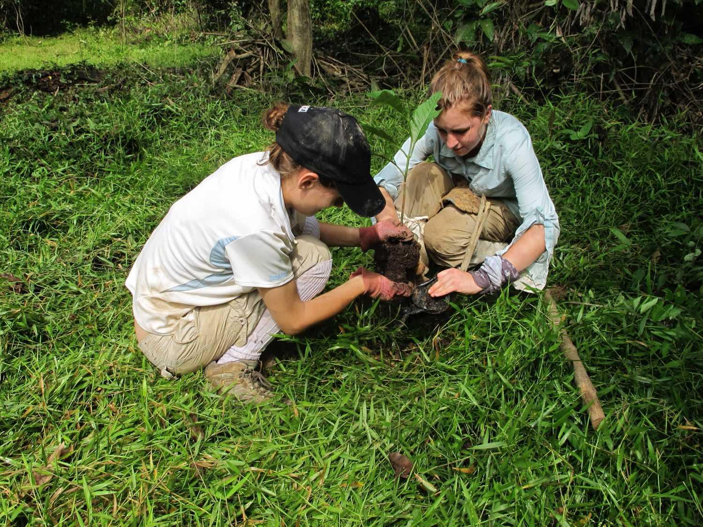 camps_international_environmental_protection