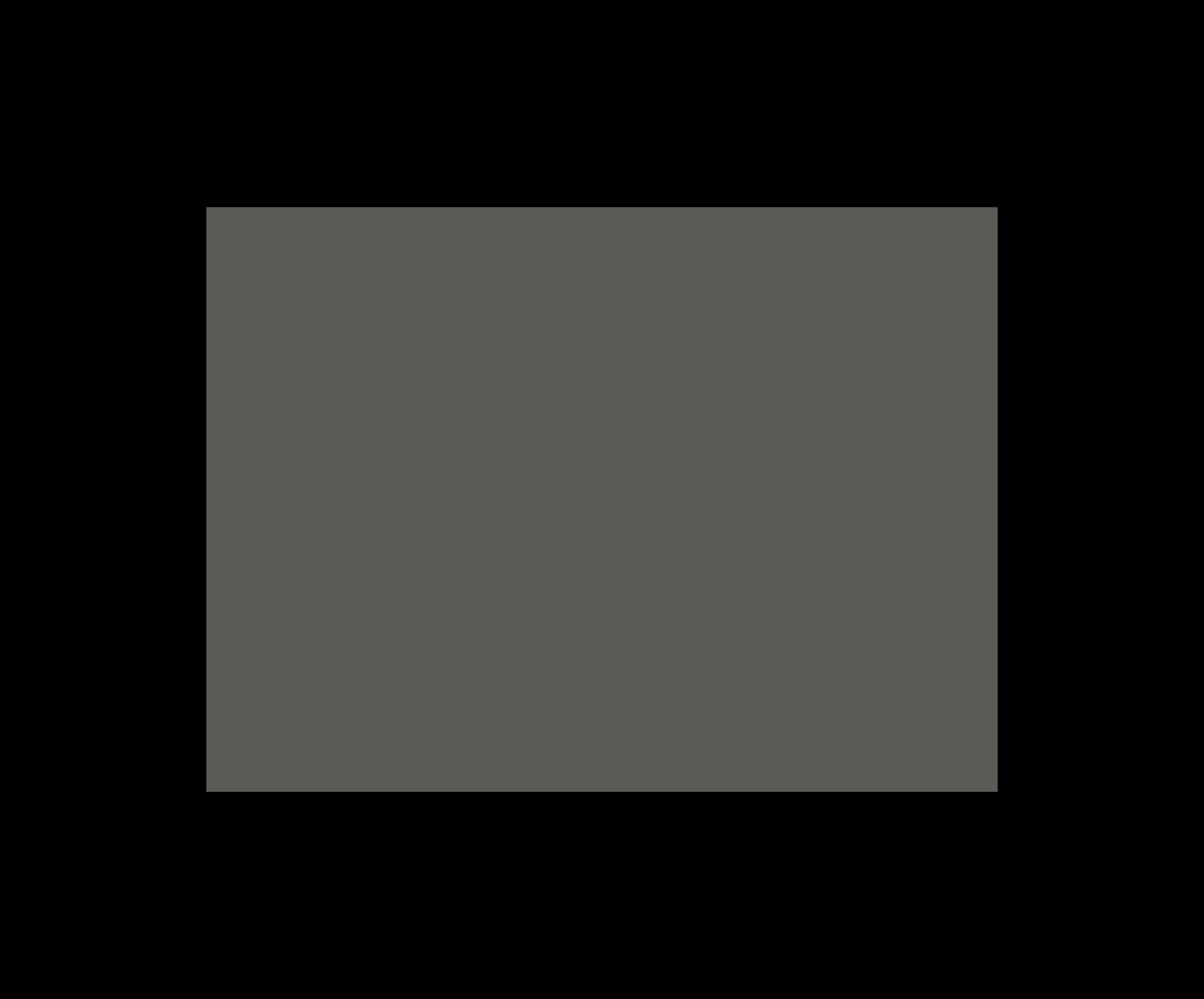 fun_culture_element_camera_icon_grey