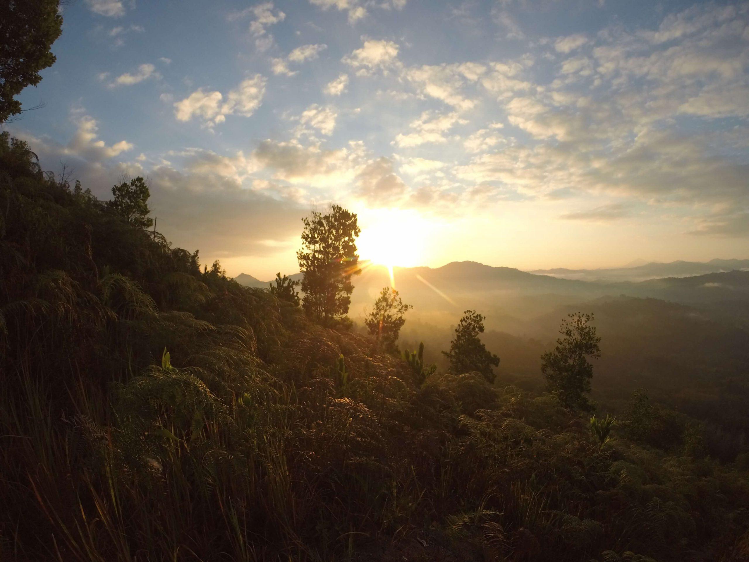 school_expedition_borneo_impact_bongkud_sunrise