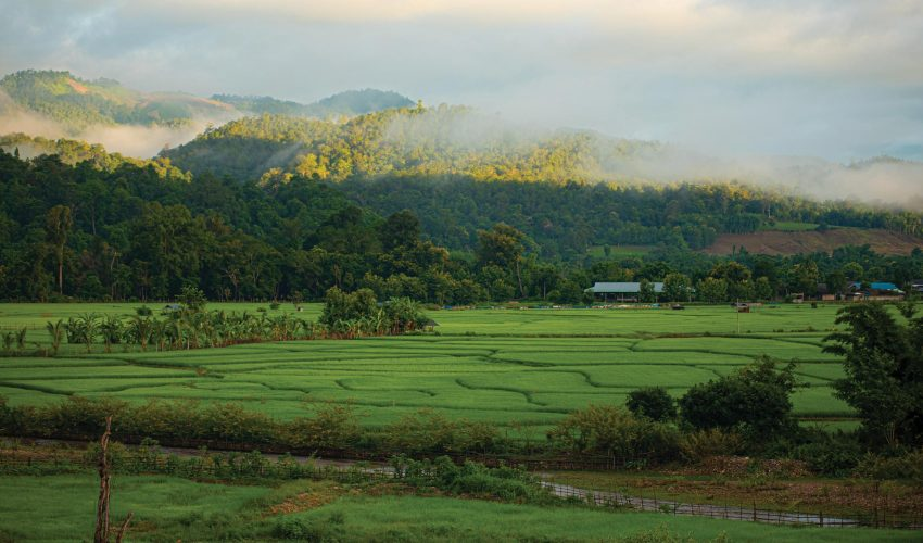 school_expeditions_northern_thailand_adventure_rice_fields