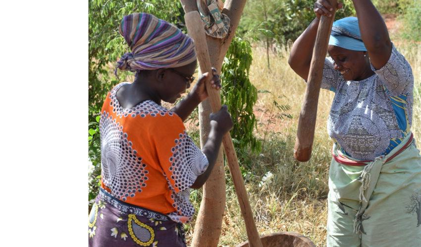 school_expedition_kenya_rws_local_mammas_edp
