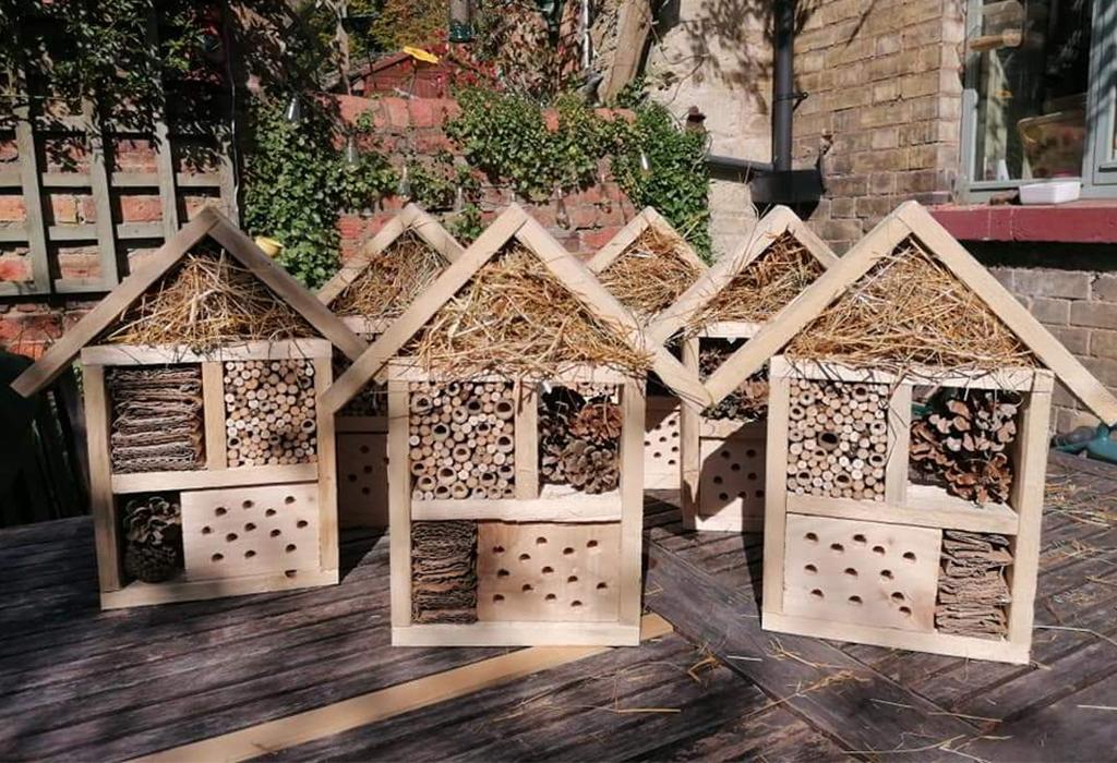Bug houses fundraising