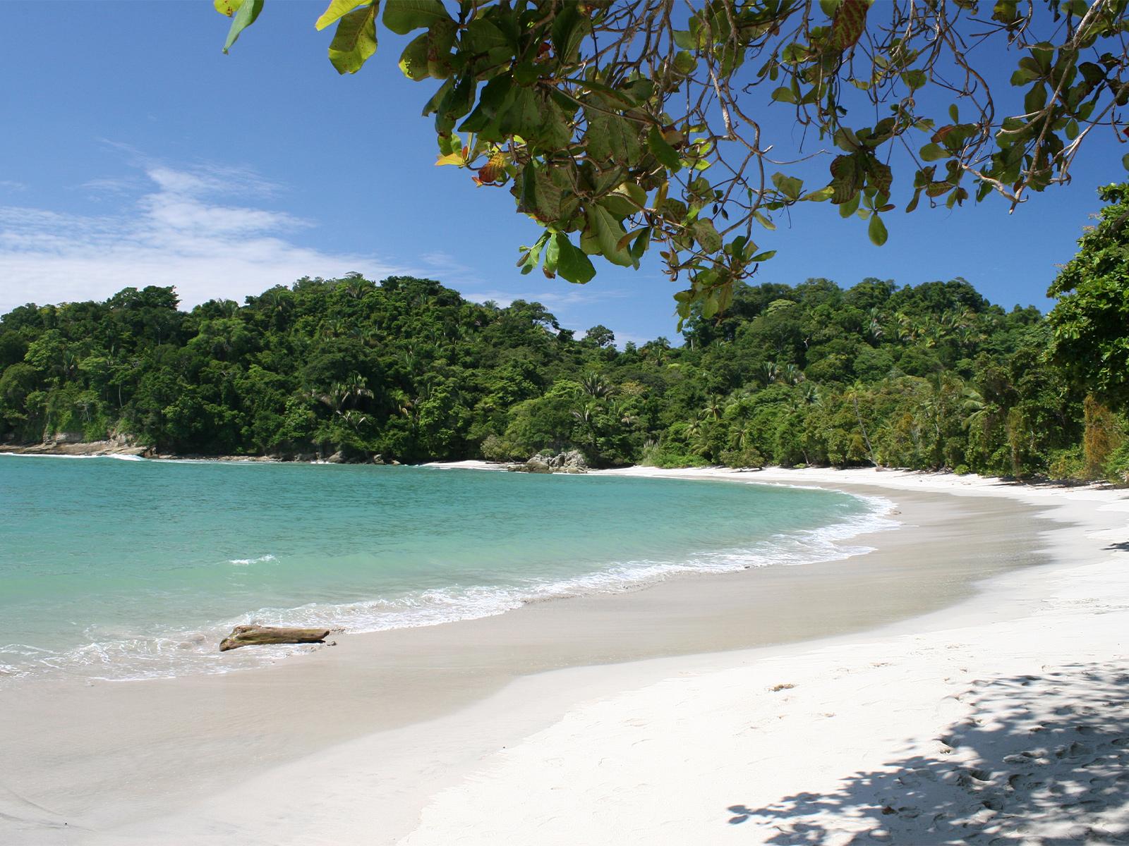 school_expedition_costa_rica_impact_white_beach