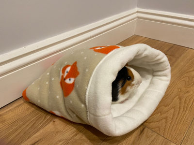 earning money by making pet beds
